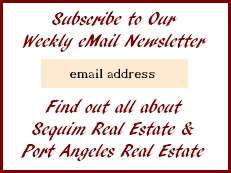 Subscription Newsletter