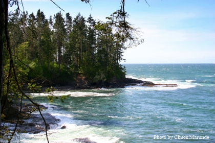 Port Angeles Water View Property
