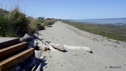 Sequim Water Front Property