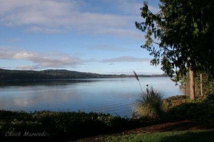 gorgeous sequim waterfront property