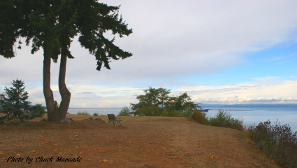 Port Angeles Waterfront Home for Sale on High Bluff
