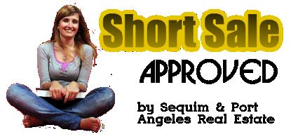 Short Sale Agent