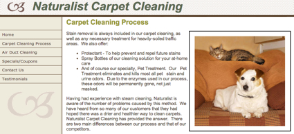 Sequim Carpet Cleaner