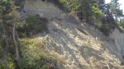 Sequim Bluffs